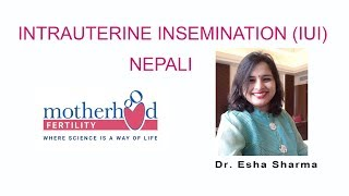 Intrauterine Insemination (IUI) Nepali, Process, Success rate
