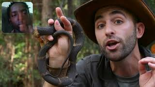Brave Wilderness Cottonmouth v. Water Snake Reaction