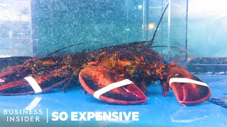 Why Lobster Is So Expensive | So Expensive
