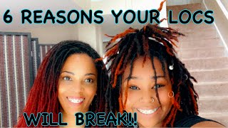 6 REASONS YOUR LOCS WILL BREAK (sisterlocks & traditional locs)