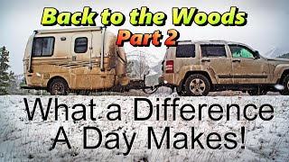 Back in the Woods Part 2: What A Difference a Day Makes