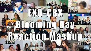 "EXO-CBX (첸백시) '花요일 (Blooming Day) ""Reaction Mashup"
