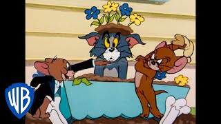 Tom & Jerry | The Revenge of the Mouse | WB Kids