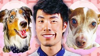 The Try Guys Switch Pets For A Day