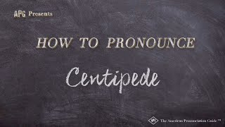 How to Pronounce Centipede  |  Centipede Pronunciation