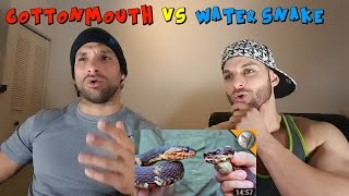 Brave Wilderness - Cottonmouth vs Water Snake [REACTION]