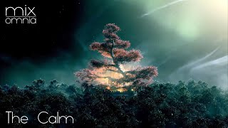 The Calm - Chillstep Mix