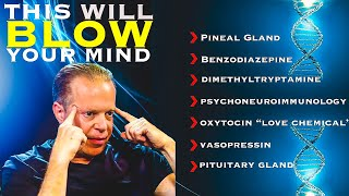 DMT, Pineal Gland & The Piezoelectric Effect | Dr Joe Dispenza
