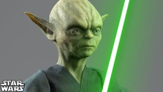 How Yoda Became a Jedi [FULL STORY] - Star Wars Canon and Legends